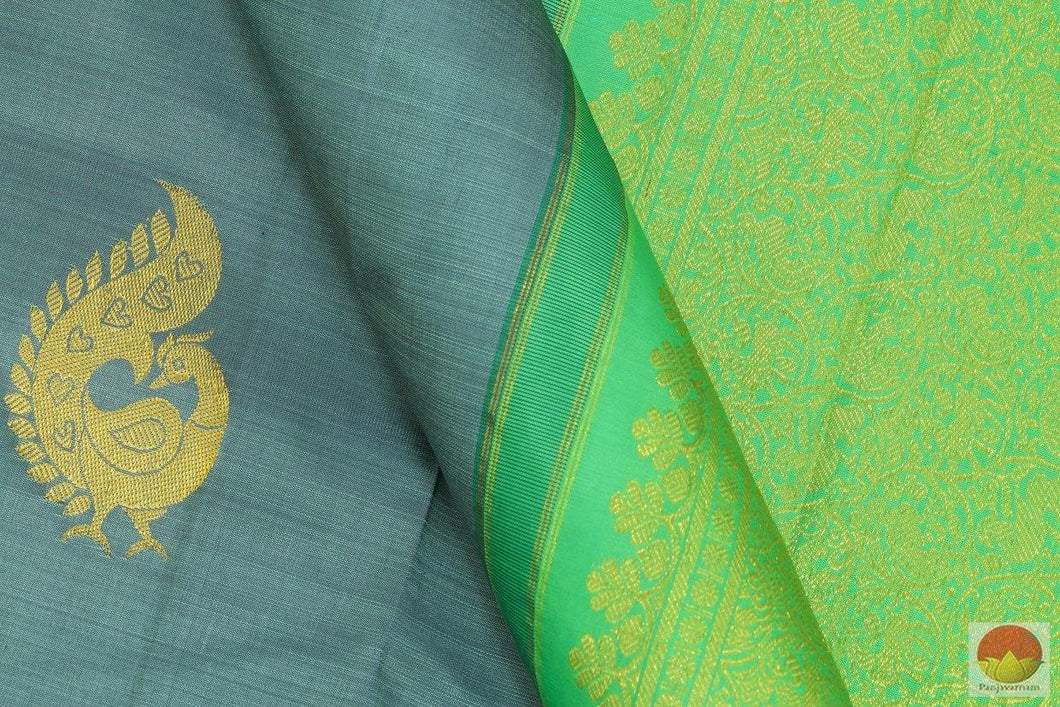 design detail of borderless kanchipuram silk saree