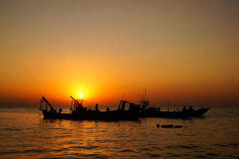 Fishing Boats at Sunset