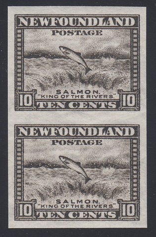 0193NF1806 - Newfoundland #193a - Mint Imperf Pair