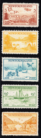 0283NF1708 - Newfoundland C13-C17 - Used Set