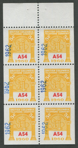 0294BC1708 - BCT196 - Mint Booklet Pane, Watermarked