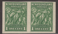 0183NF1708 - Newfoundland #183b - Mint Imperf Pair