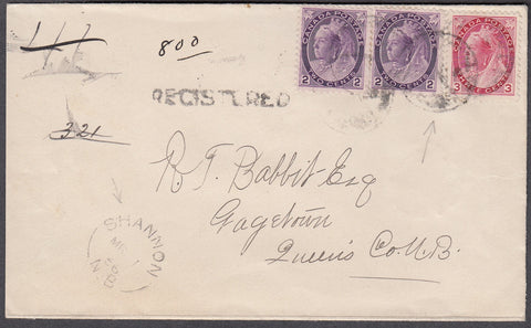 0076NB1807 - #76 Pair & 78 on 'Shannon', N.B. Registered Cover