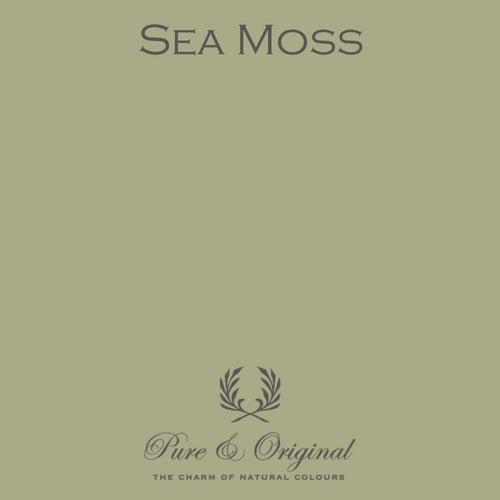 Pure & Original - Sea Moss - Cara Conkle