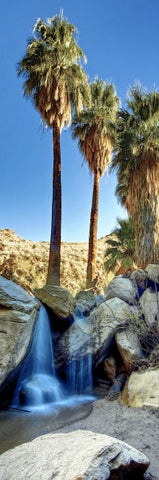 Customized yoga photo mat or the Indian Canyons in Palm Springs California offered by Yogaphotomats.com