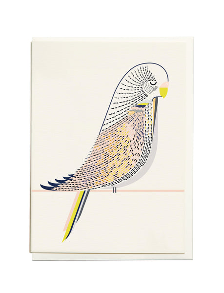 Gelato Budgie A6 Greeting Card
