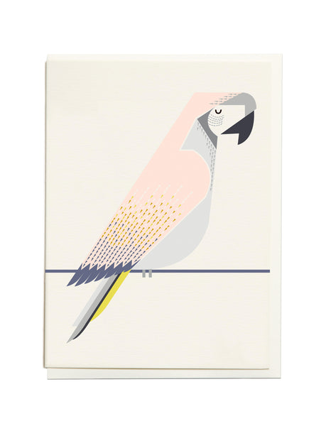Gelato Macaw A6 Greeting Card