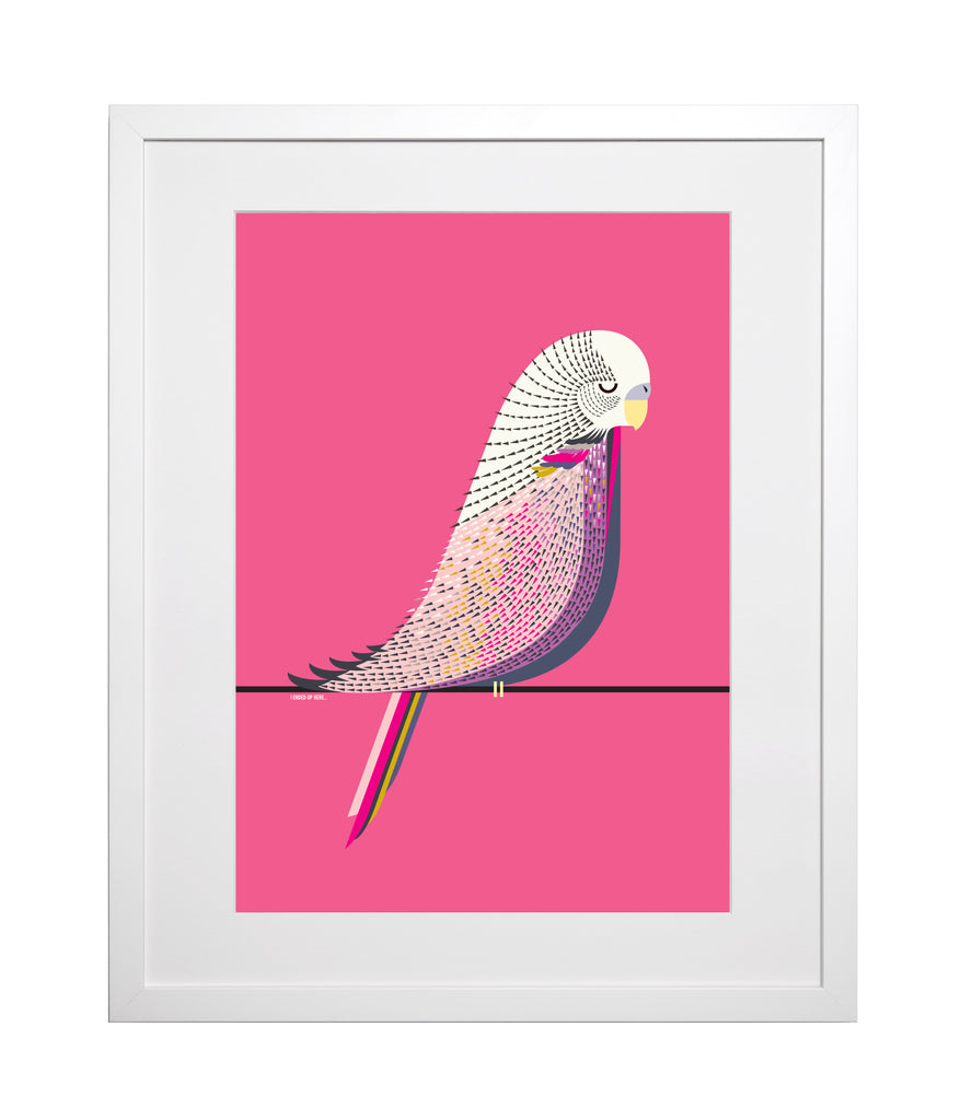 Budgie A3 Art Print COMING SOON