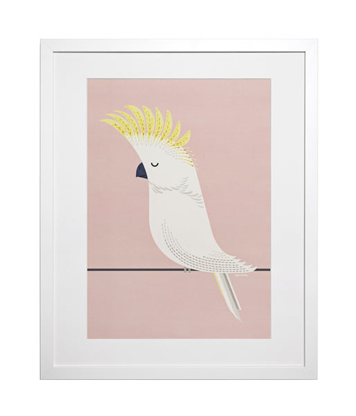 Cockatoo A3 Art Print