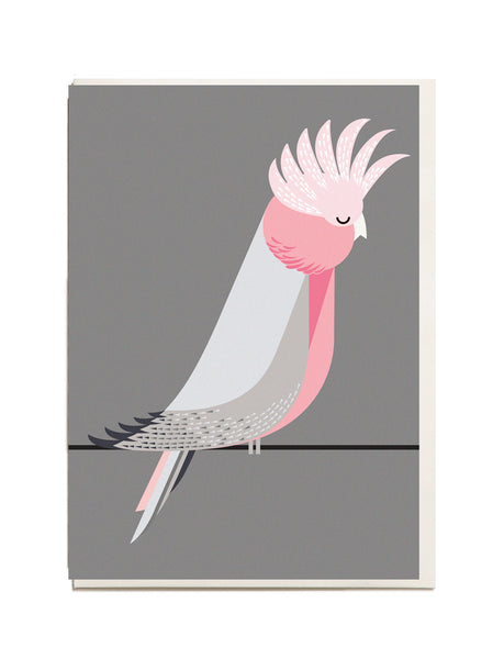 Galah A6 Greeting Card