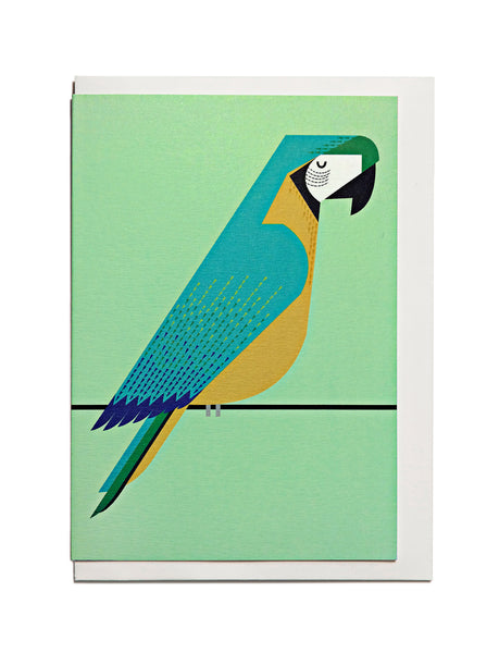 Macaw A6 Greeting Card