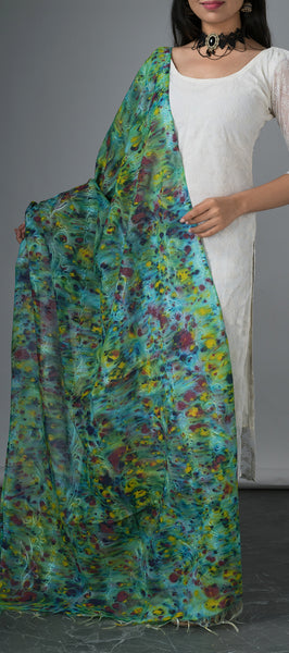 Multicolored Semi Tussar Dupatta