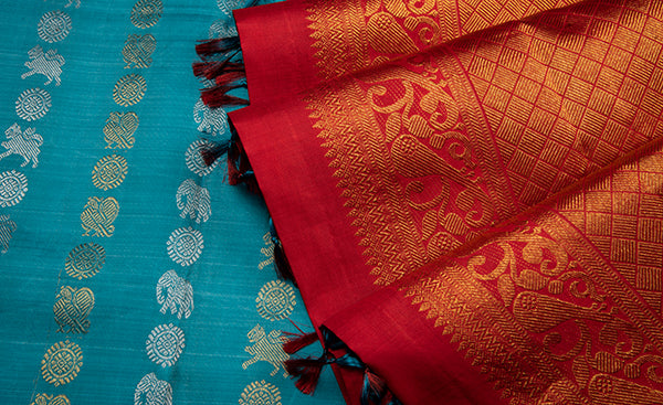 Sky Blue Borderless Kanchipuram Silk Saree