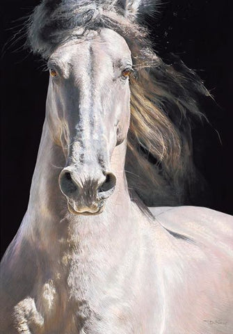 Resplendence Original by Denise Finney *NEW*-Original Art-The Acorn Gallery-Denise-Finney-equine-artist-beautiful-paintings-of-horses-The Acorn Gallery