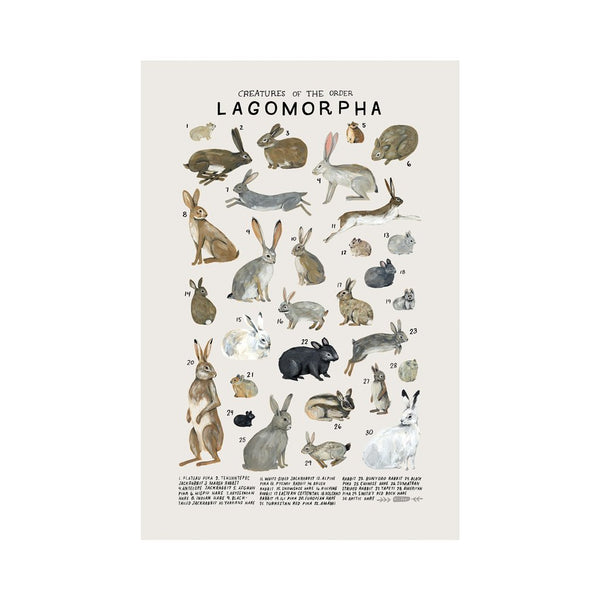 Lagomorpha Print, Kelzuki, Dapper Mr Bear