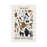 Primates Print, Kelzuki | Dapper Mr Bear