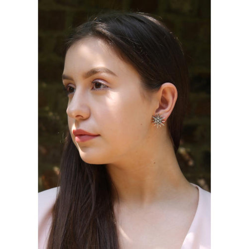 Twelve Point Crystal Star Earrings