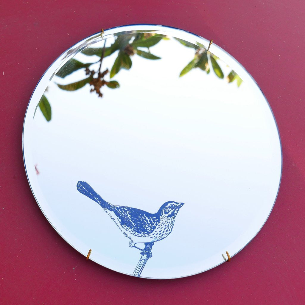 Mirror of Wonders - Bird - A Luz Natural