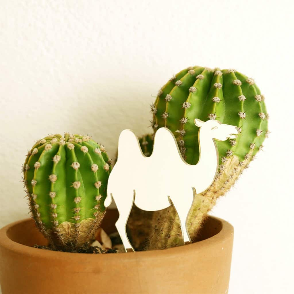BiCa - Plant Decor | Giraffe & Co - A Luz Natural