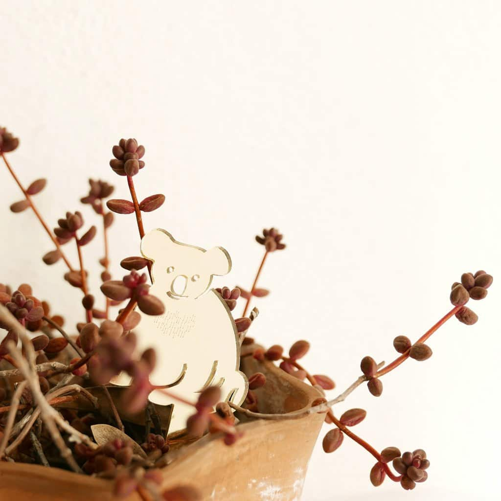 BiCa - Plant Decor | Kangoroo & Co - A Luz Natural