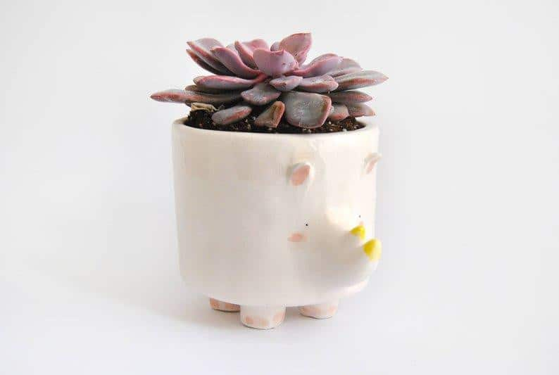 Barruntando Ceramics - Rhino Planter - A Luz Natural