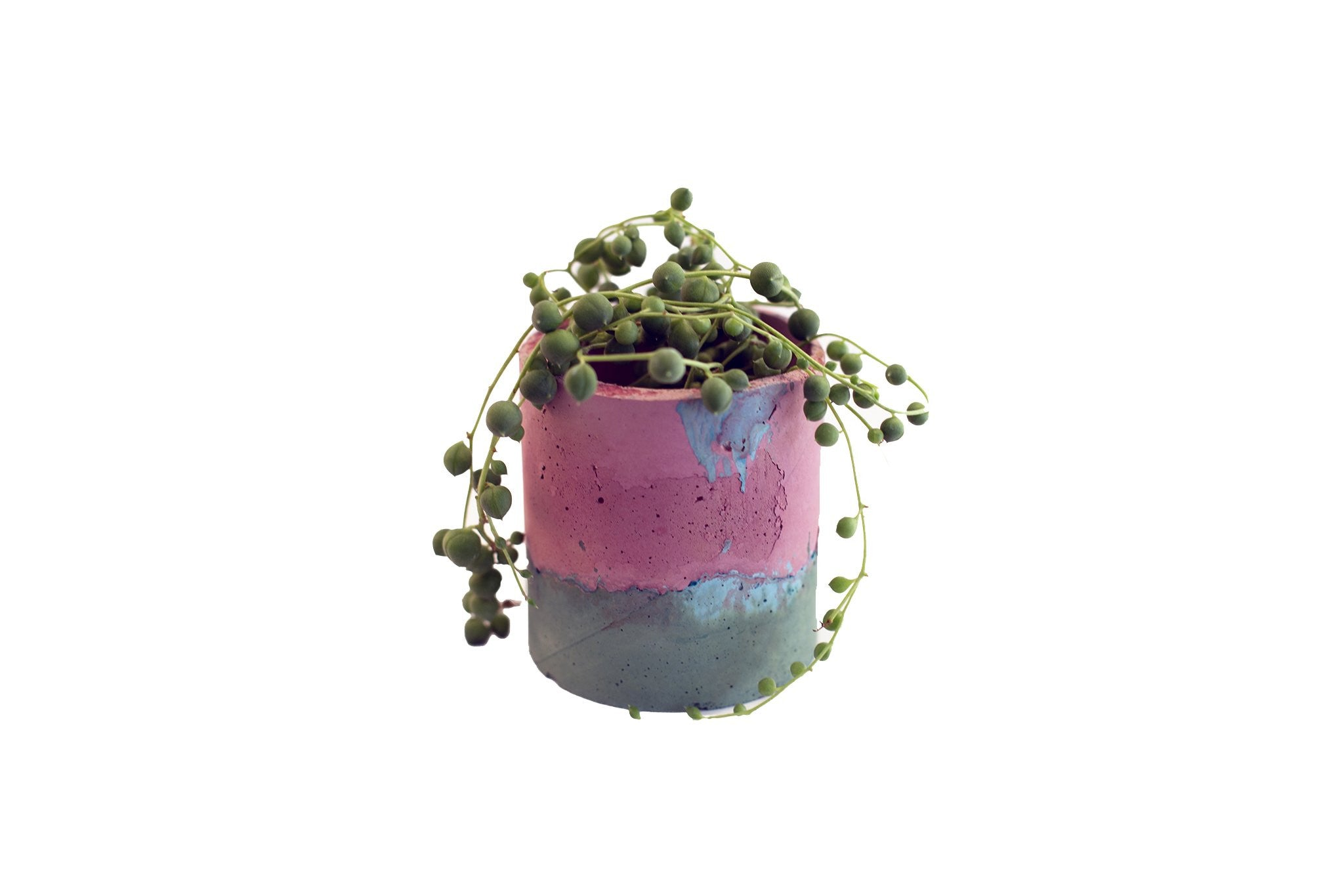 Studio Emma - Pink Cement Vase - A Luz Natural