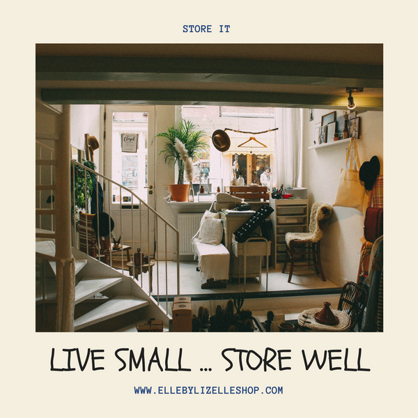 Live Small Store Well