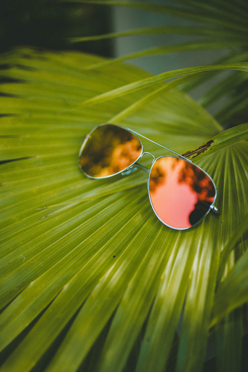 Caribbean Sunglasses (Orange)