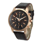Get Our Golden Fame Watch For FREE!