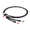 Chord Signature Analogue RCA Cable