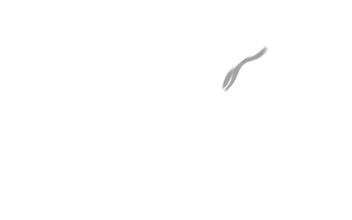 Too Fine Smoke Logo
