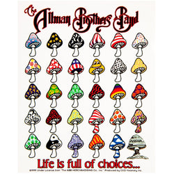 Allman Brothers - Choices Decal