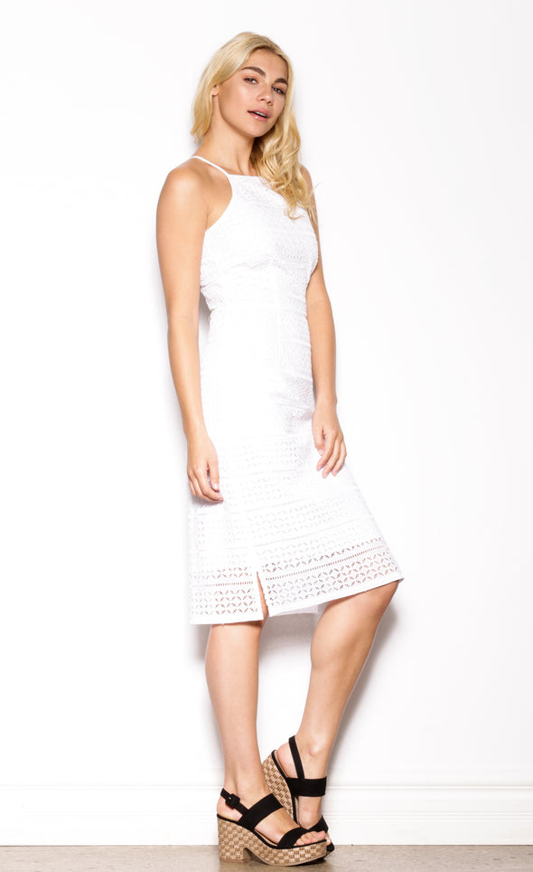 Eyelet You Go Dress - Pink Martini Collection