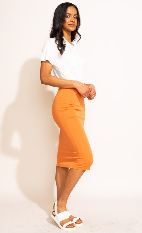 The Jett Skirt - Pink Martini Collection