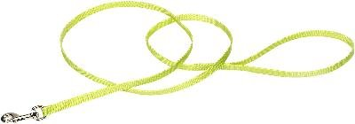 "Coastal Pet Products 3/8"" Single-Ply Nylon 6' Training Dog Leash"