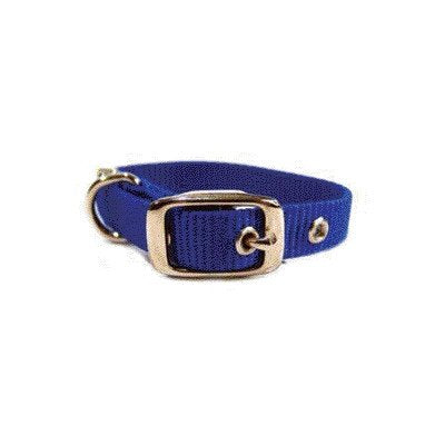 "Single Thick Dog Collar [Set of 3] Size: 12"", Color: Blue"