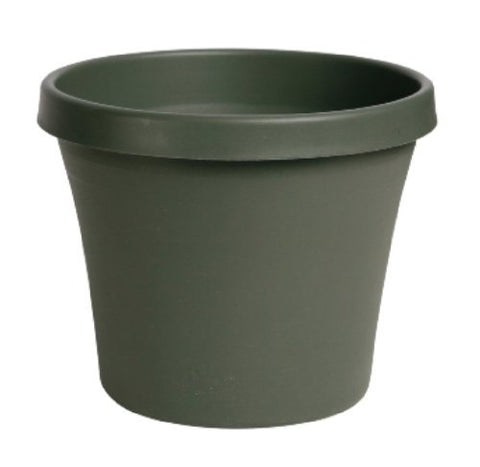 "TERRAPOT LIV GREEN 12"" (Pkg of 10)"