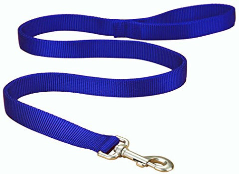 Hamilton Double Thick Nylon Dog Training Lead Total Length Including Loop Handle, 1-Inch by 6-Feet, Blue