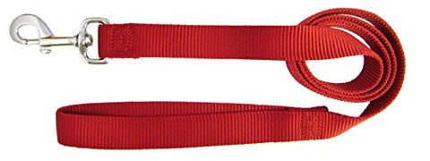 Hamilton Single Thick Nylon Dog Lead, 1-Inch by 4-Feet, Red