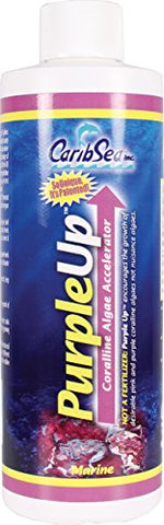 Carib Sea Purple Up Algae Accelerator, 8-Ounce