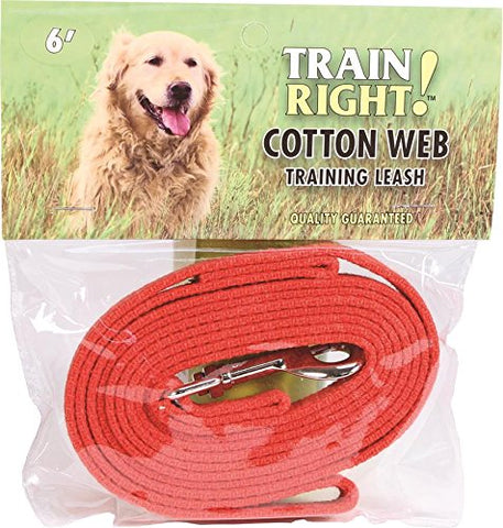 Coastal Pet Products 00506 RED06 Train Right! Cotton Web Dog Training Leash Red, 6 Ft
