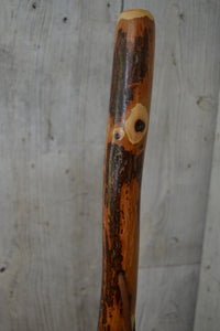 Hickory Walking Stick