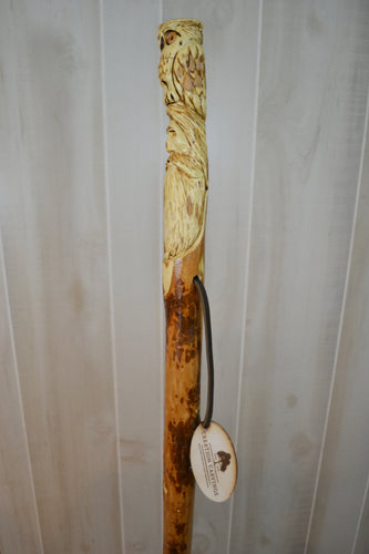 Owl on Wood Spirit Walking Stick Carving, Owl on Wizard Head, Inspired by Radagast the Brown in the Hobbit