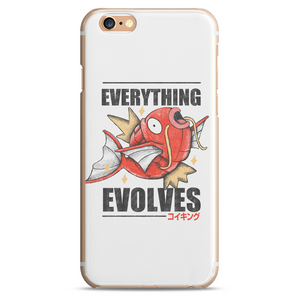 Everything Evolves