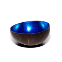 Metallic Lacquer Coconut Bowl