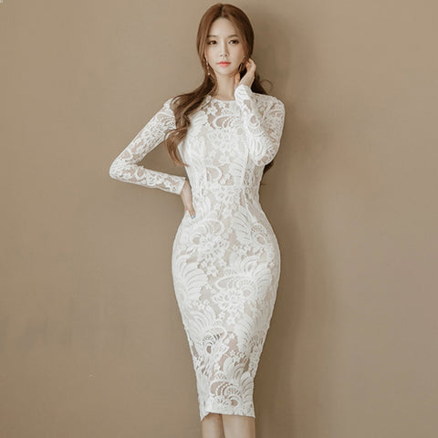 Hollow Out Long Sleeve Lace Bodycon Dress