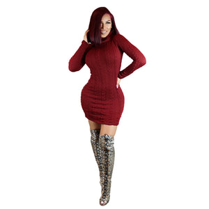 Turtle Neck Bodycon Knit Dress