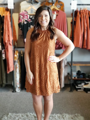 Copper Frill Neck Detail All Over Lace Shift Dress