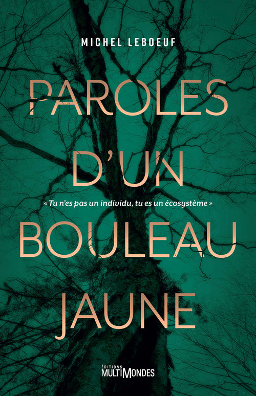 Paroles d'un bouleau jaune | Words of a Yellow Birch