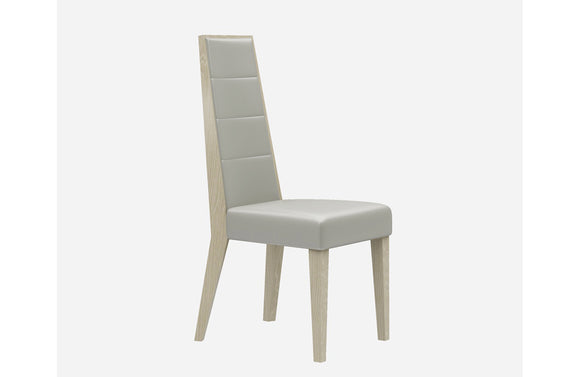 Braelyn Modern Dining Chair